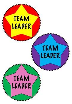 Team Leader Lanyards/Badges