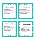 Team Leader cards
