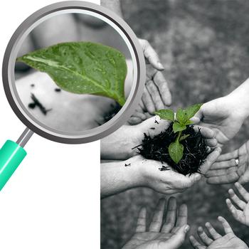Teamwork Theme Photos / Photograph Clip Art Set for Commercial Use