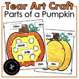 Tear Art Parts of a Pumpkin