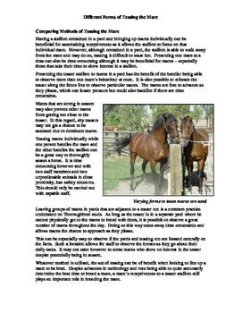 Teasing the Mare Fact Sheet