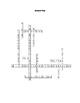 Technology Crossword Puzzle #2 (STEM Activity)