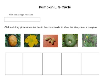 Technology Pumpkin Life Cycle for grades K-2