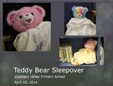 Teddy Bear Sleepover Event