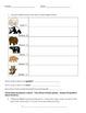 Bear Theme Integrated Performance Task
