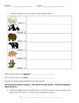 Bear Theme Integrated Performance Task
