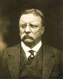 Teddy Roosevelt and WWI Assorted Primary Source Video Film