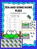 Teen Numbers Ten And Some More Flies