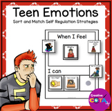 Teen Sort and Match Emotions and Self Regulation Strategies