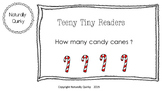 Teeny Tiny HOLIDAY reader GR level A