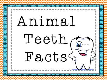 Fun Facts {teeth}