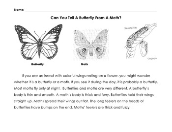 Compare /Contrast: Tell A Butterfly from A Moth w/12 Literal Reading Comprehensi