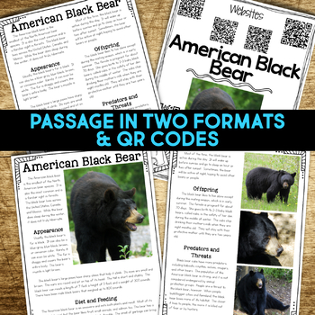 Temperate Forest Animals BUNDLE: Informational Article & Comprehension Resources