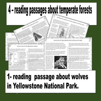 Temperate (Deciduous) Forest Biome Reading, Mapping and Color by Number  Activity