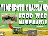 Food Chain and Food Web: Temperate Grassland Card Sort
