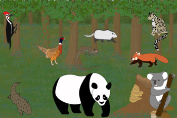 Tempertate Forest Biome and Animals