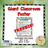 Ten Commandments of Calculus Giant Poster