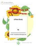 Ten Days of Wildflowers