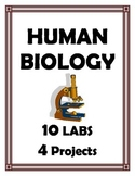 BODY SYSTEMS LABS AND PROJECTS