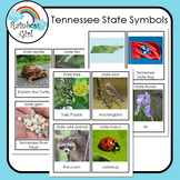 Tennessee State Symbols Cards