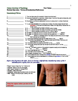 Terms of Anatomical Reference - Review Exercise