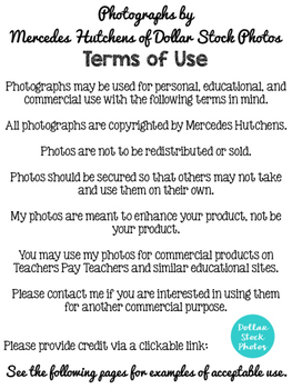 Terms of Use for Dollar Stock Photos by Mercedes Hutchens