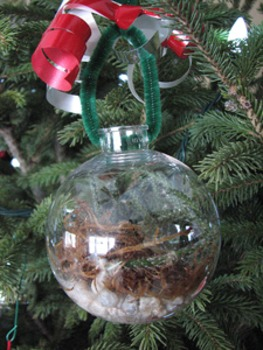 Terrarium Ornaments - Project Based Learning for Unit on Plant Adaptations.