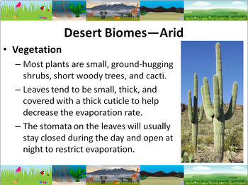Ecology: Terrestrial Biomes Powerpoint Slide Show