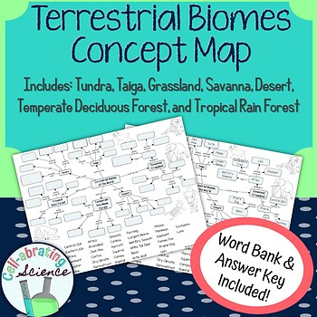 Terrestrial Biomes Concept Map by Cellabrating Science  TpT