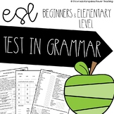 Test In Grammar (Beginners and Elementary Levels)