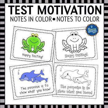 Testing Notes