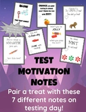 Test Motivation Notes for treats