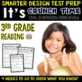 Test Prep: Reading Test Prep for 3rd Grade