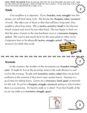 Fourth Grade Test Prep:  DIBELS DAZE Practice