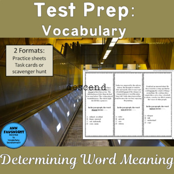Test Prep Vocabulary: Determining Word Meaning