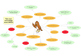 Test your knowledge about birds (mind map)