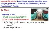 Testable Questions (Scientific Method) - Lesson Presentati
