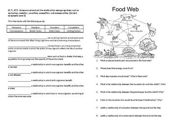 Relationships Among Organisms Worksheets & Teaching