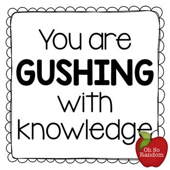 Testing Reward | GUSHING With Knowledge