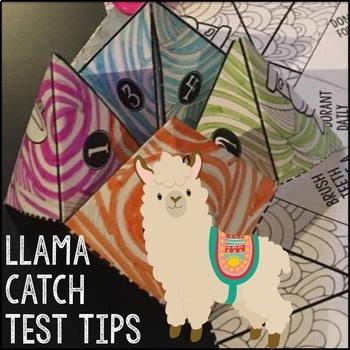Test Taking Tips Cootie Catcher