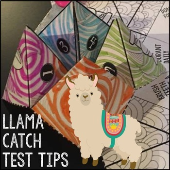 Test Taking Tips Cootie Catcher