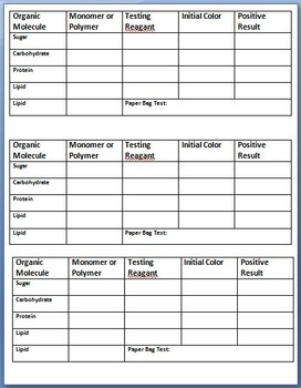 Identifying and Testing for Organic Molecules Chart