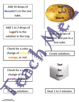 Testing for Starch and Sugar