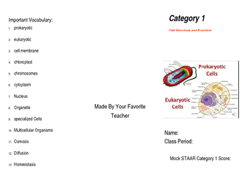 Texas Biology Category 1 Review Brochure