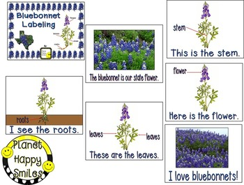 Texas Bluebonnet Labeling  ~ Reader and Activity