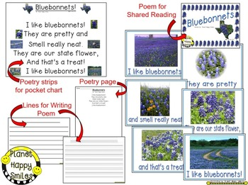 Texas Bluebonnet  Poem  ~ Poetry Page and Writing Activity