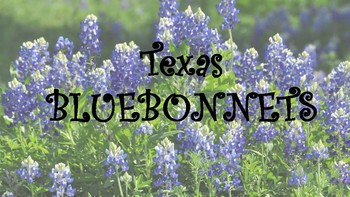 Texas Bluebonnets- Horticulture, Agriculture Science, Plant Science