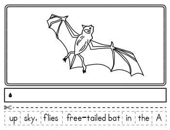 Texas Creatures: A Kindergarten Texas Animal Symbols Cut & Paste Book