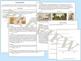 Texas History Primary Source Analysis Bundle