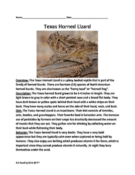Texas Horned Lizard - informational article questions vocabulary word search